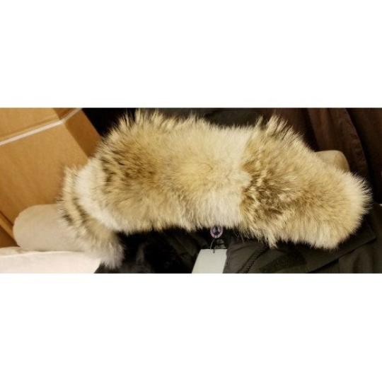 Canada goose fur